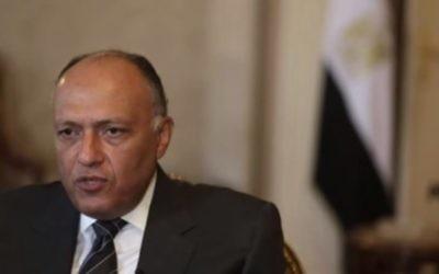 Sameh Choukri, ministre égyptien des Affaires étrangères. (Crédit : capture d'écran YouTube)