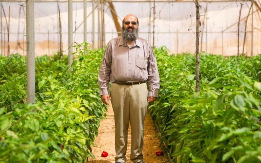Eliyahu Ozan se trouve dans un de ses champs. (Crédit photo: Michal Fattan)