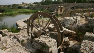 La roue à eau (Crédit : Shmuel Bar-Am)