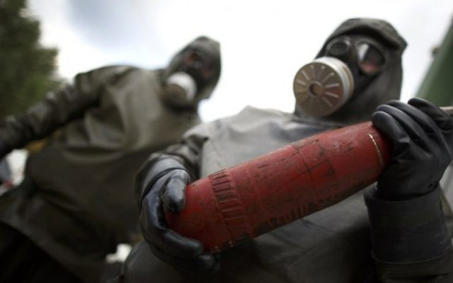 Une manifestation contre l'utilisation des armes chimiques à Munster, au Nord de l'Allemagne (Crédit : AFP PHOTO/ Phillip Guelland)
