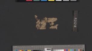 Rouleau de manuscrit de la mer Morte retrouvé à Qumran.(Crédit : Autorité des Antiquités israéliennes)