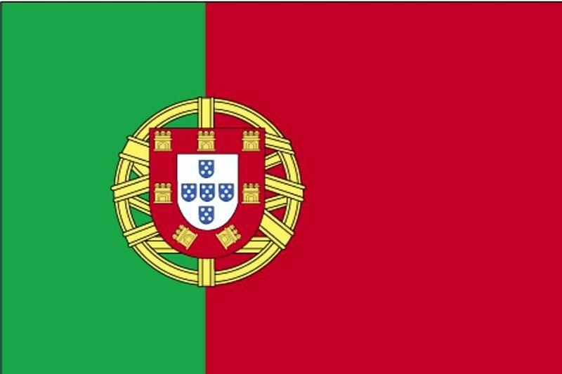 Le Parlement Portugais Appelle Le Gouvernement à Reconnaître Letat