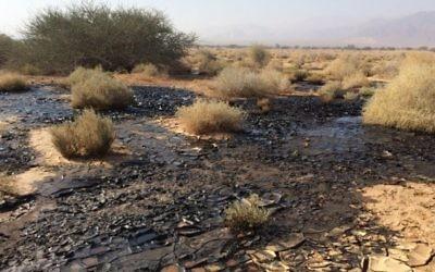 Les dégâts causés part l'explosion du pipeline Trans-Israel début décembre 2014 à Arava