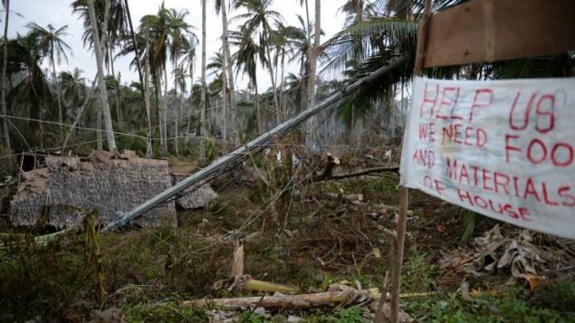 Les ruines d'une maison d'un fermier détruite près de cocotiers déracinés par le Typhoon Hagupit dans le village de Taft town, dans la province Samar de l'Est photo prise le 10 décembre 2014 (Crédit : AFP/TED ALJIBE)