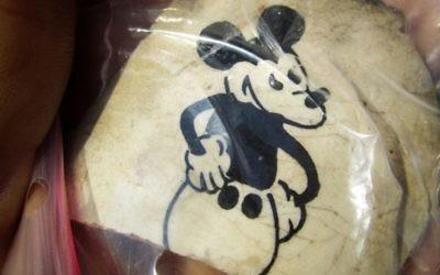 Un fragment d'une tasse en céramique excavé à l'ancien camp d'extermination nazi de Sobibor, en Pologne orientale, imprimé avec un dessin animé de Mickey Mouse est vu. L'artefact a été déterré par des archéologues Wojtek Mazurek et Yoram Haimi il y a plusieurs mois, et photographié le 11 novembre 2014, en dehors de Sobibor (Crédit: Matt Lebovic / The Times of Israel)