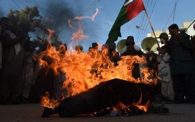 Des drapeaux français et des effigies de François Hollande ont été brûlés  (Crédit : AFP)