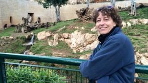 La chef vétérinaire et directrice du zoo biblique de Jérusalem Nili Avni-Magen vérifie les préparatifs pour la tempête de neige - 5 janvier 2015. (Crédit : Renee Ghert-Zand / Times of Israël)
