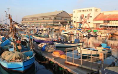 Bateaux amarrés au port de Jaffa (Crédit : Liron Almog/FLASH90)