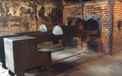 Un four crématorium au musée d'Auschwitz, le 28 janvier 2015. (Crédit : Amanda Borschel-Dan/The Times of Israel)