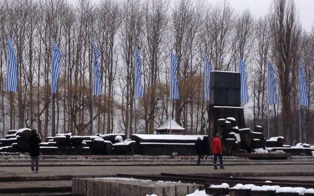 Les bannières blanches et bleues flottant au mémorial d'Auschwitz-Birkenau le 28 janvier 2015 (Crédit : Amanda Borschel-Dan/The Times of Israel)