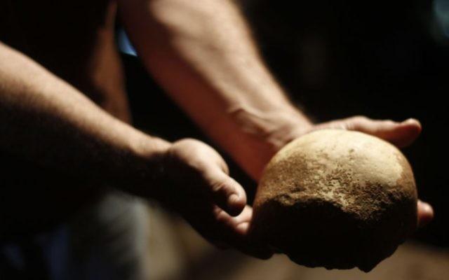 Un crâne d'homme moderne découvert dans une grotte en Israël (Crédit : Judah Ari Gross)