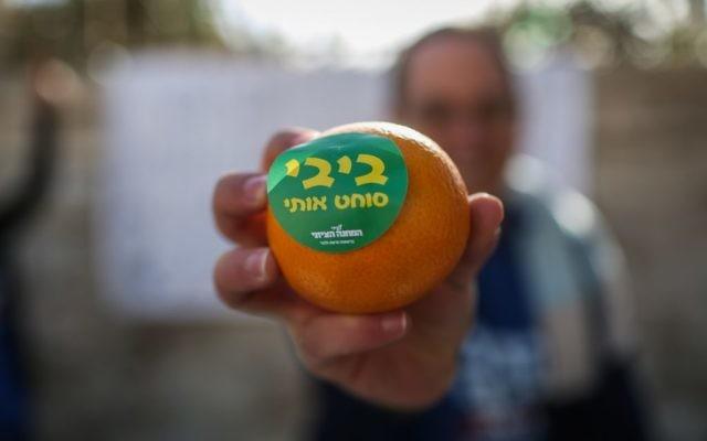 """Un partisan de l'Union sioniste tient une mandarine où il est écrit : """"Bibi me presse"""" (Crédit : Hadas Parush/Flash90)"""