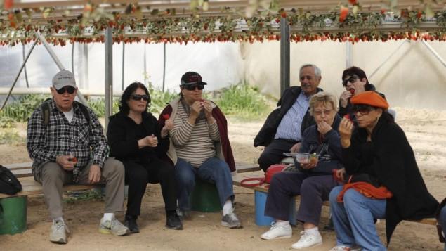 Les employés de Egged lors d'un voyage organisé par l'entreprise (Crédit : Judah Ari Gross/Times Of Israel)