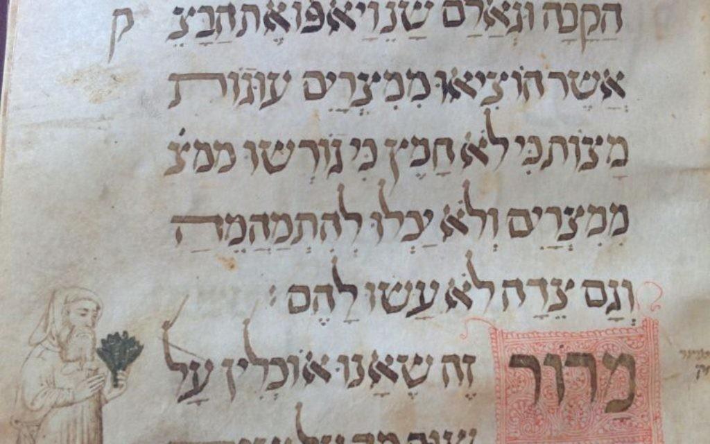 Une page de la Haggadah Wolff du 14ème siècle , à la Bibliothèque nationale, montrant un Juif médiéval tenant des herbes amères (Crédit photo: Ilan Ben Zion / Times of Israel)