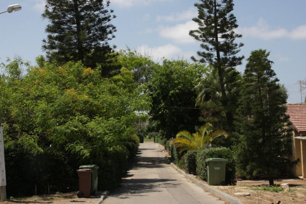 A lane at Moshav Shavei Zion (photo credit: Shmuel Bar-Am)
