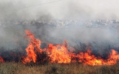 Illustration : un incendie en Israël. (Crédit :Talucho / Flash90)