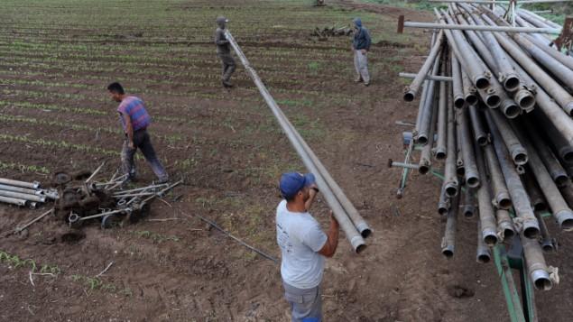 Des ouvriers arabes israéliens transportant des tuyaux d'eau dans un champ dans la vallée d'Hefer, dans le nord d'Israël, le 22 avril 2010. Trouver des moyens d'utiliser l'eau recyclée pour une utilisation agricole diminuera de façon significative le poids imposé sur le Jourdain (Crédit : Gili Yaari / Flash90)