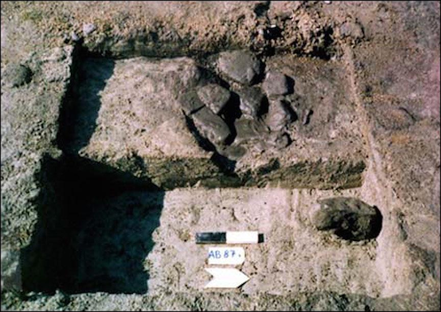 Certains des objets sur le site Ohalo II (Crédit : Dani Nadel / université de Haïfa)