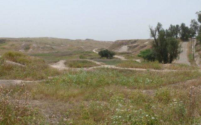 Le site de l'ancienne cité royale de Suse, en Iran (Crédit : Wikimedia/ Pentocelo/public domain)