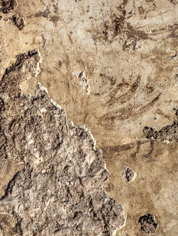Dessins trouvés à l'intérieur d'une mikvé datant de la période du Second Temple découverte à Jérusalem, découverte annoncée par l'Autorité des Antiquités d'Israël le 5 août 2015 (Crédit : Shai Halevy, IAA)