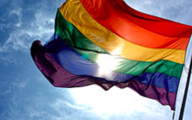 Drapeau LGBTIQ. (Crédit : Wikimedia commons)