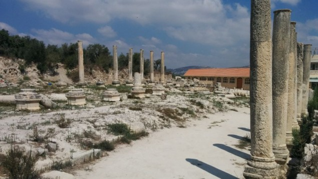 Les vestiges de la basilique romaine de Sebastia en Cisjordanie (Crédit : Ilan Ben Zion/Times of Israel staff)