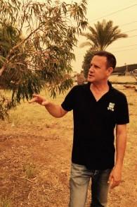 Aviv Eisenband , un arboriculteur du KKL, explique que la floraison d'arbres comme l'eucalyptus aide à conjurer les effets problématiques de l'urbanisation (Photo: Jessica Steinberg / Times of Israel)