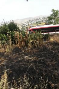 De l'herbe brûlée dans le jardin de Nava Segev à Armon Hanatziv à Jérusalem causée par un cocktail Molotov lancé par la jeunesse arabe du village d'à côté. (Crédit : Autorisation Nava Segev)