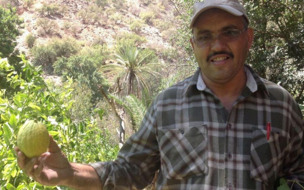 Le chauffeur Mohammed tenant un etrog au Maroc (Photo: Ben Sales/ JTA)