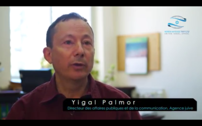 Yigal Palmor, le Directeur des affaires publiques et de la communication de l'Agence juive (Crédit : Capture d'écran YouTube)