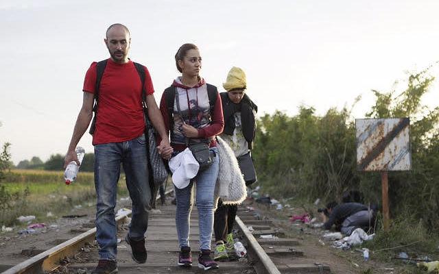 Les réfugiés syriens en chemin vers la frontière hongroise accompagné d''israAID (Crédit : Autorisation IsraAId)