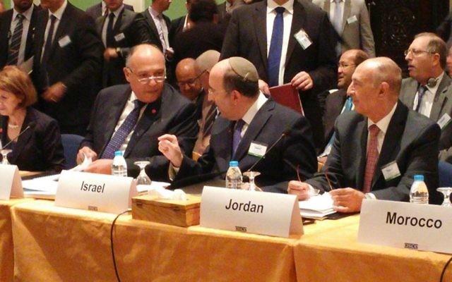 Le directeur général du ministère des Affaires étrangères, Dore Gold, à la réunion de l'Organisation pour la sécurité et la coopération en Europe, à Amman, en Jordanie, le 20 octobre 2015 (Crédit : Ministère des Affaires étrangères)