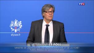 Capture d'écran Stéphane Le Fol, porte-parole du gouvernement français, le 18 novembre 2015 (Crédit : TF1)