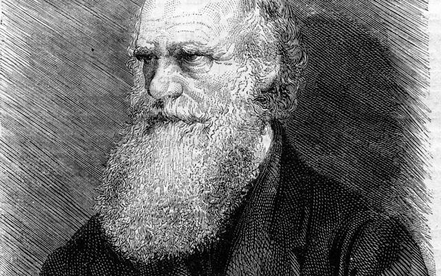 Charles Darwin (Crédit :  Shutterstock)