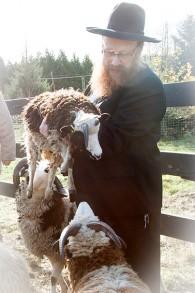 Le rabbin Falik Schtroks, émissaire du Chabad à Vancouver, a donné un cours à la ferme des Lewinsky en octobre. (Crédit : autorisation Gil Lewinsky)