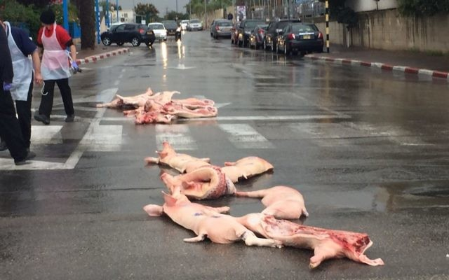 Des carcasses de porcs éparpillées dans les rues de Rishon Lezion, le 14 décembre 2015. (Crédit : porte-parole de la municipalité de Rishon Lezion)