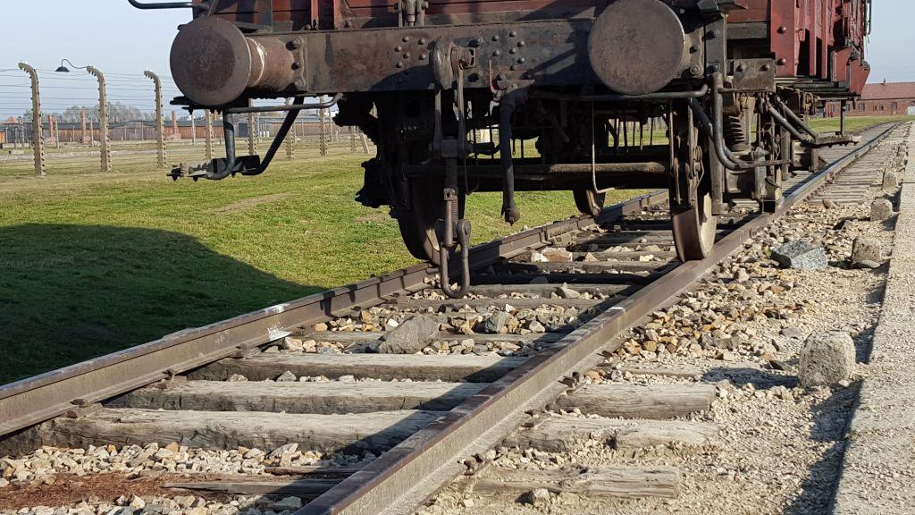 Photographié le 2 novembre, 2015, l'un des wagons à bête utilisés pour transporter des juifs hongrois à Auschwitz-Birkenau au cours de l'été 1944 (Crédit : Matt Lebovic / The Times of Israel)