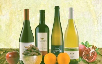 Vins israéliens. Illustration. (Crédit : IMP média)