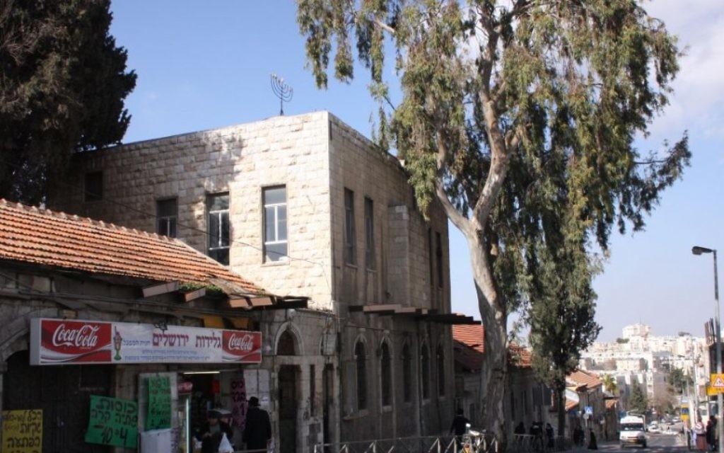 Le seul énorme et vieil eucalyptus de la rue principale du quartier Boukharim à Jérusalem. (Crédit : Shmuel Bar-Am)