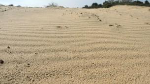 La dune Leviathan est un arrêt amusant pour les familles en vélo dans la région du kibboutz Carmia. (Crédit : Melanie Lidman/Times of Israel)