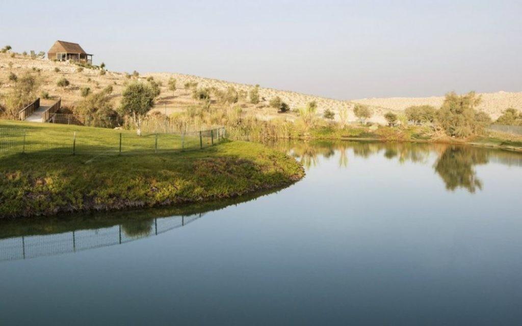 Le lac de la Fontaine de Jouvence est utilisée pour nager pendant la majorité de l'année et est un point de rencontre pour la faune locale. (autorisation Aviad Bar-Ness)