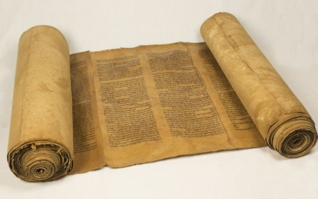 """Ilustration : rouleau de Torah encré sur du """"gevil"""". Espagne, 15ème siècle (Collection Green)"""