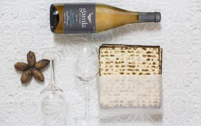 Vin et matza (Crédit : autorisation)