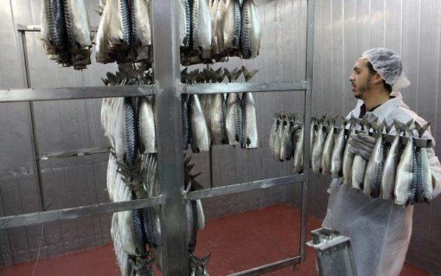 Poissons préparés dans une usine de Ramlé. Illustration. (Crédit : Yaakov Naumi/Flash90)