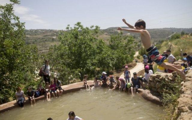 Les Israéliens nagent dans une source naturelle près de Jérusalem pendant Pessah, le 24 avril 2016. (Crédit : Yonatan Sindel/Flash90)