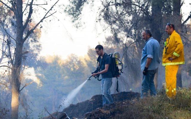 Les pompiers israéliens s'affairent à éteindre un feu de forêt, dans la forêt de Biriya, près de Safed, au nord d'Israël, le 25 avril 2016. (Crédit photo : Basel Awidat/Flash90)