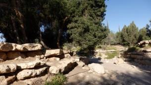 Le jardin abritant les tombes de David et Paula Ben Gourion, à Midreshet Ben Gourion, le 27 mai 2016. (Crédits : Héloïse Fayet / Times of Israel)