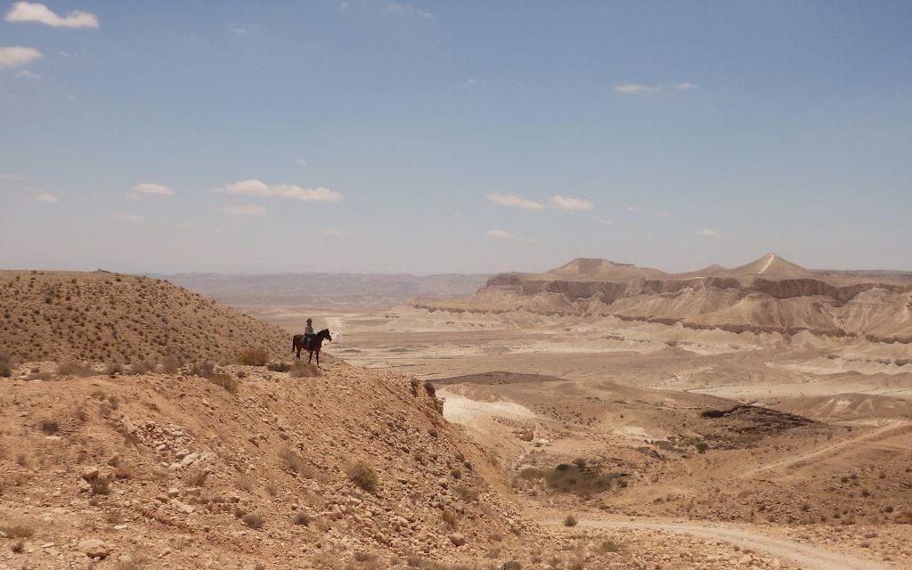 Le guide touristique Arthur du Mosch sur son cheval lors d'une randonnée équestre dans le désert du Néguev, le 28 mai 2016. (Crédits : Héloïse Fayet / Times of Israel)