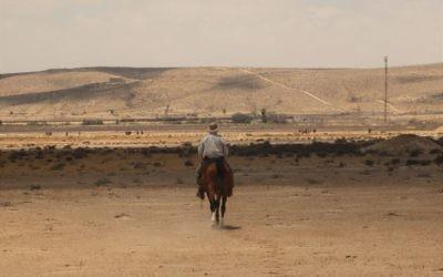 Le guide touristique Arthur du Mosch lors d'une randonnée équestre dans le désert du Néguev, le 28 mai 2016. (Crédits : Héloïse Fayet / Times of Israel)