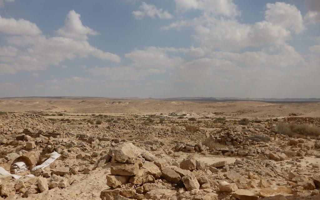 Les ruines de la ville nabatéenne de Shivta, surplombant le désert du Néguev, le 28 mai 2016. (Crédits : Héloïse Fayet / Times of Israel)